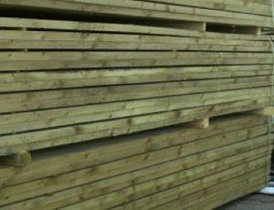 immutatud puit